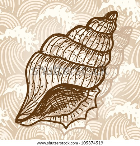 Sea shell. Original hand drawn illustration in vintage style - stock vector