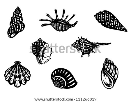 Sea shells and mollusks set isolated on white background, such a logo. Jpeg version also available in gallery - stock vector