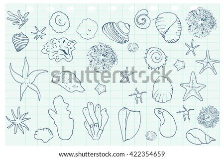 Sea stars and shells pattern.  Vector background.