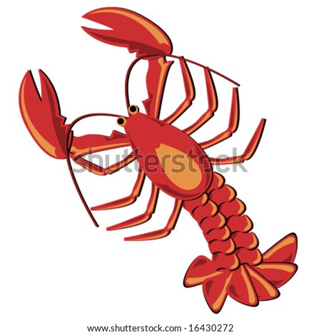 Seafood. Shellfish. Lobster illustration isolated over white. - stock vector