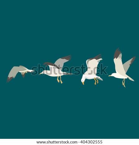 seagulls flying set. Vector - stock vector