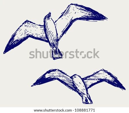 Seagulls. Sketchy - stock vector
