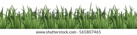 Seamless background design with green grass illustration