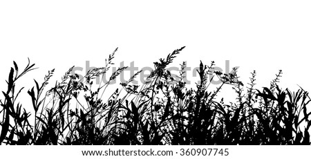 Seamless Background Tracing grass. Vector - stock vector
