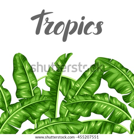 Seamless border with banana leaves. Image of decorative tropical foliage. - stock vector