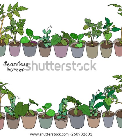 Seamless border with various seedlings and potted plants. Vector design, seamless when joined together. - stock vector