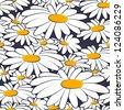 seamless daisies, vector - stock photo