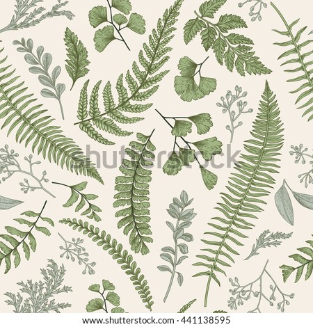 Seamless floral pattern in vintage style. Leaves and herbs. Botanical illustration. Boxwood, seeded eucalyptus, fern, maidenhair. Vector design elements. - stock vector