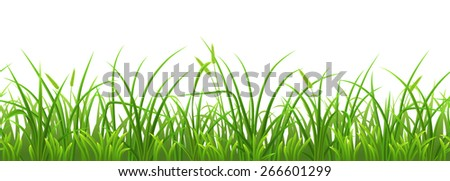 Seamless fresh green grass on white background - stock vector