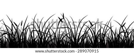 Seamless grass silhouette on white, vector illustration - stock vector