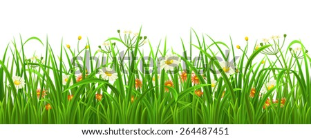 Seamless green grass with herbs and flowers, vector illustration - stock vector