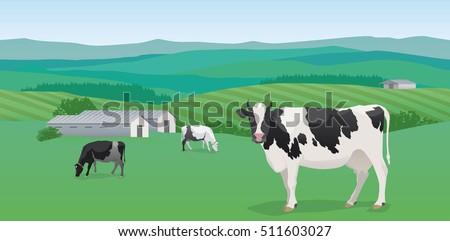 Seamless Horizontal Rural Landscape Hills Fields Dairy Farm Cows Road