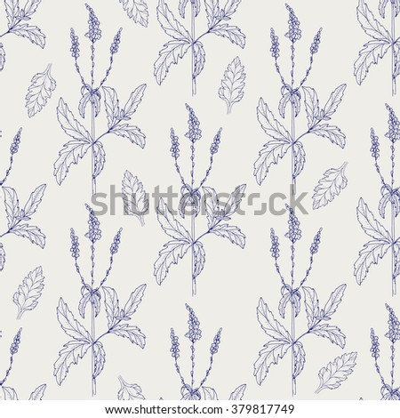 Seamless pattern leaf. Pen ball verbena branch and leaves vector background. Sketch medicinal plant seamless texture. Hand drawn illustration for print, decoration, design, web, wrapping - stock vector