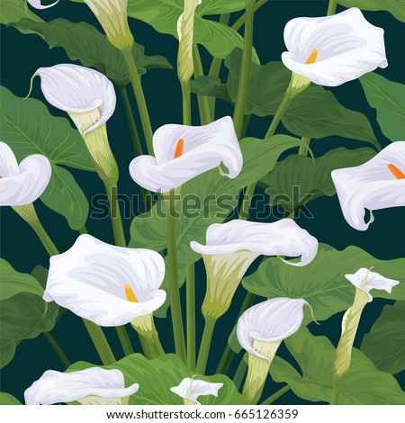 seamless pattern of calla lily flowers with leaves on dark green background vector set of - Calla Lily Flower
