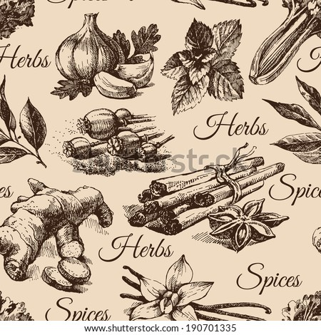 Seamless pattern of kitchen herbs and spices. Hand drawn sketch illustrations - stock vector