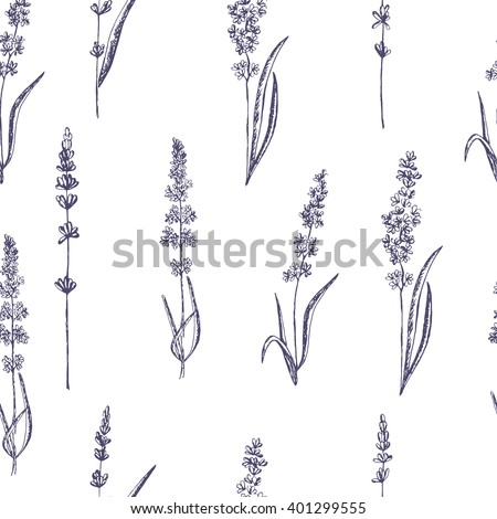 Seamless pattern of lavender flowers on a white background. Floral pattern with Lavender for packing. Stock vector - stock vector