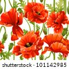 seamless pattern of red poppies realistic - stock vector