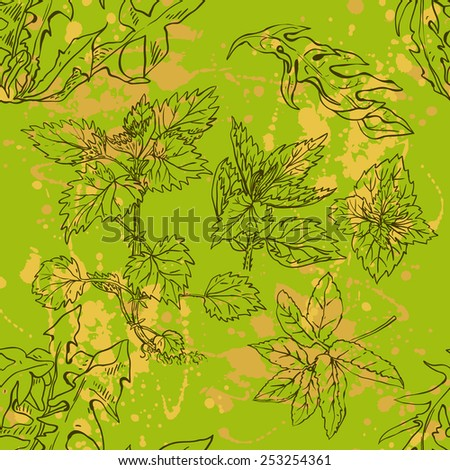 Seamless pattern of various weeds - stock vector
