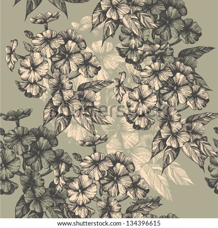 Seamless pattern with blooming phlox, hand-drawing. Vector illustration. - stock vector