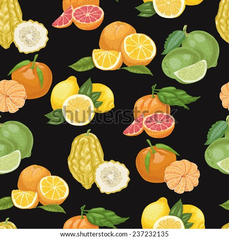 Seamless pattern with citrus fruit on black background. Vector illustration for your design - stock vector