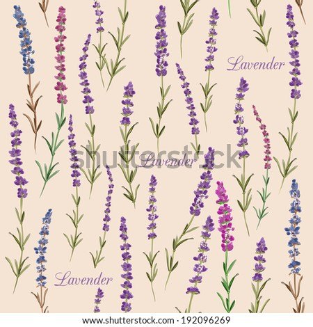 Seamless pattern with lavender. Vintage style. - stock vector