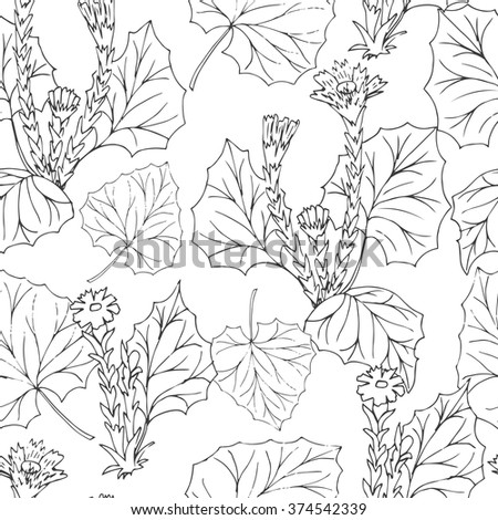 Seamless pattern with medical plants.  Hand drawn. Vector illustration