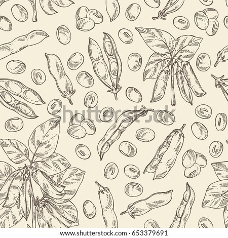 Seamless pattern with soybean: bean, soy pod, plant and leaves. Vector hand drawn illustration.
