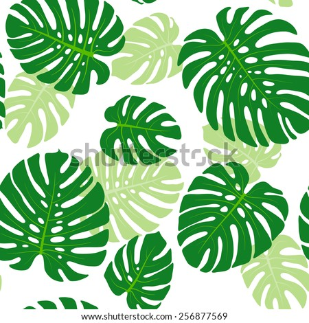 Seamless pattern with tropical leaves of monstera - stock vector
