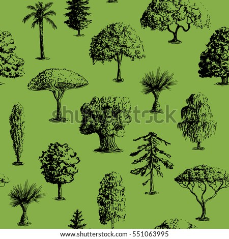 Seamless vector hand drawn tree pattern. Oak, olive, apple-tree, pine, spruce, maple, dragon blood, brahea, cypress, acacia, palm.