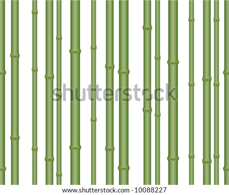 Seamless vector in any direction. Bamboo Pattern. - stock vector