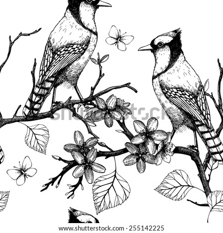 Seamless vector pattern with ink hand drawn birds on blooming  tree twigs. Vintage sketch background isolated on white - stock vector