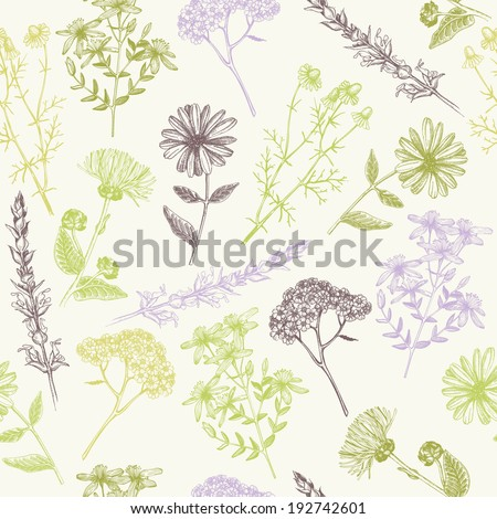 Seamless vintage  pattern with ink hand drawn medicinal herbs and plants. - stock vector