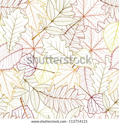 seamless with autumn leaves on white background. vector illustration - stock vector