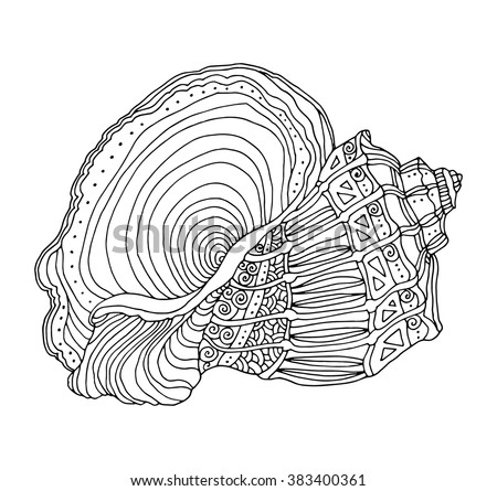 Seashell isolated on white. Vector illustration. Zentangle. Coloring book page for adult. Hand drawn artwork. Beach concept for restaurant menu card, ticket, branding, logo label. Black and white - stock vector