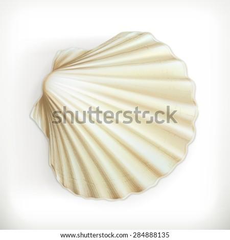 Seashell, vector icon - stock vector