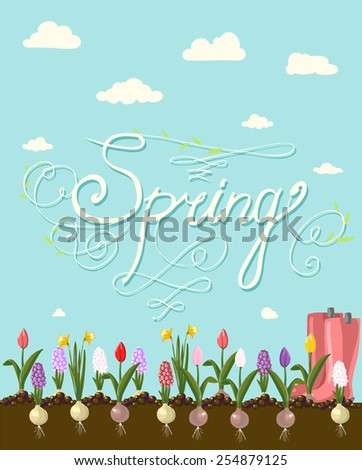 SEASON GREETINGS hand lettering  handmade calligraphy, vector  - stock vector