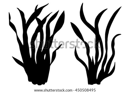 Sea grass clip art black and white
