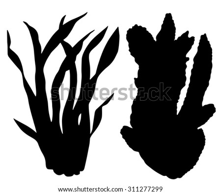 Seaweed, leaves black silhouettes set closeup isolated on white background  - stock vector