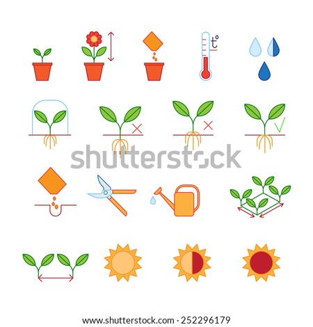 Seeding & planting instructions steps, pruning shears, watering icons set - stock vector