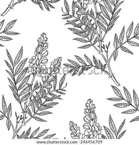 senna plant - vector seamless linear floral pattern - stock vector