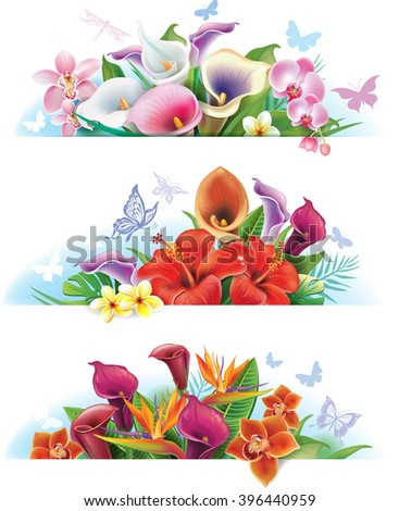 Set banners with flowers - stock vector