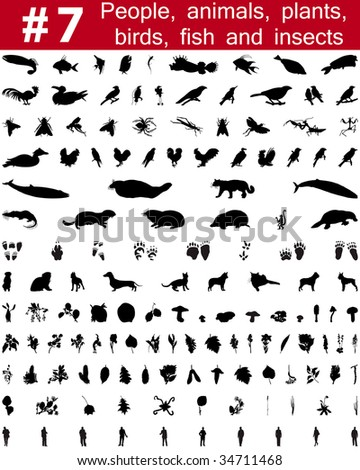 Set # 7. Big collection of collage vector silhouettes of people, animals, birds, fish, flowers and insects - stock vector