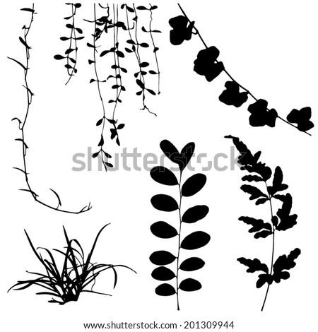 Set Black Silhouettes Leaf Vine Plant Stock Vector ...  Set Black Silho...