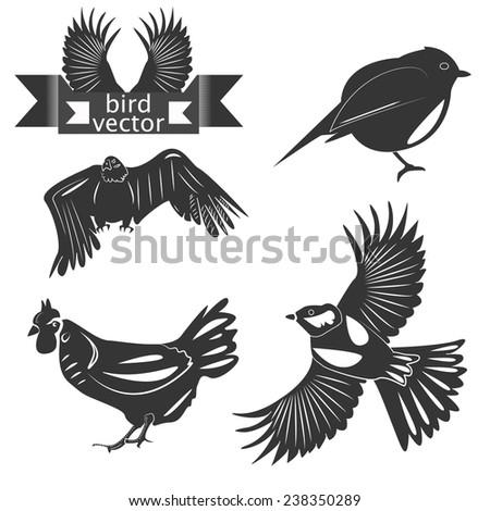 Set chicken, eagle, tits logo  - stock vector