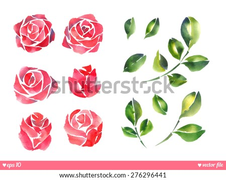 Set collection. Vector. Beautiful roses. Hand painting artwork. Happy Valentines day. Love concept for wedding invitations card ticket, congratulations, branding, logo. Gift for young girl, women - stock vector