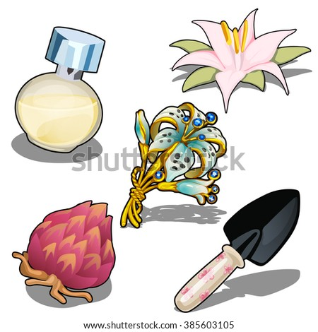 Set for planting and growing lilies. Fragrance composition. Vector illustration. - stock vector