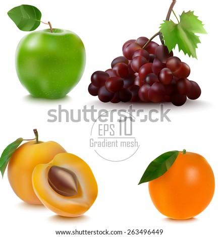 set fruit apple, grape , apricot , orange gradient mesh is made . vector illustration. eps 10 - stock vector