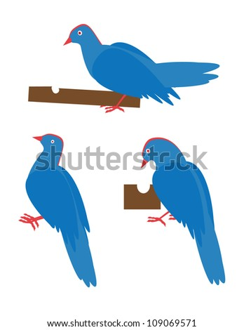 set group woodpecker - stock vector