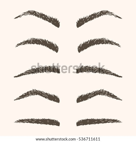 set hand drawn brown eyebrows isolated stock vector royalty free