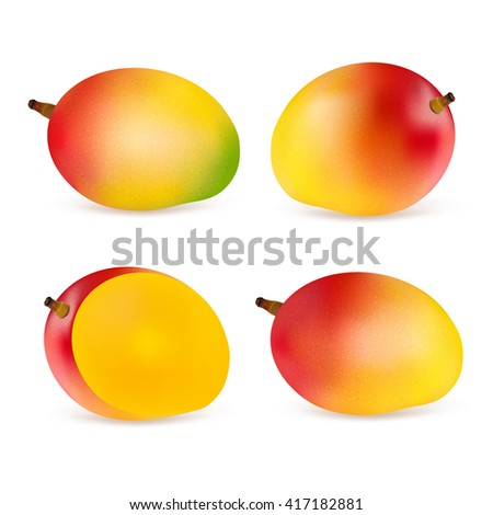 Set mangoes isolated on white background. Realistic vector illustration. - stock vector